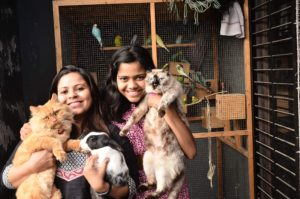 A pet sitter for all